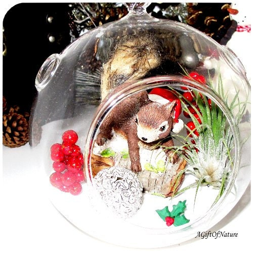 Rustic Christmas In The Woods Woodland Winter Terrarium - Glass Round Globe, Tillandsia Air Plant ~ Holiday Decor ~ Home Decor ~ Gift Idea - AGiftofNature