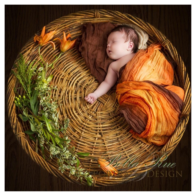 Pumpkin Spice newborn baby wrap, infant photography, cocoon, blanket