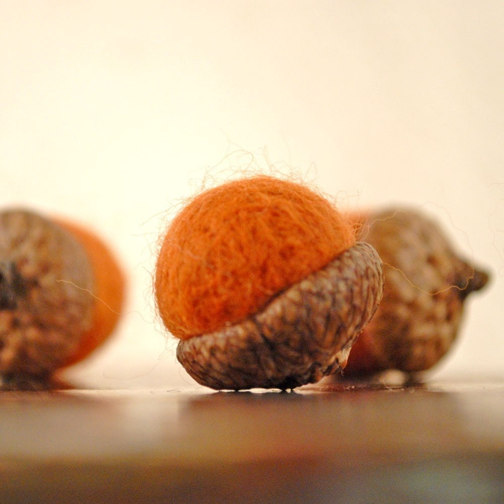 Set of 5 needle felted acorns with real tops (rust orange)