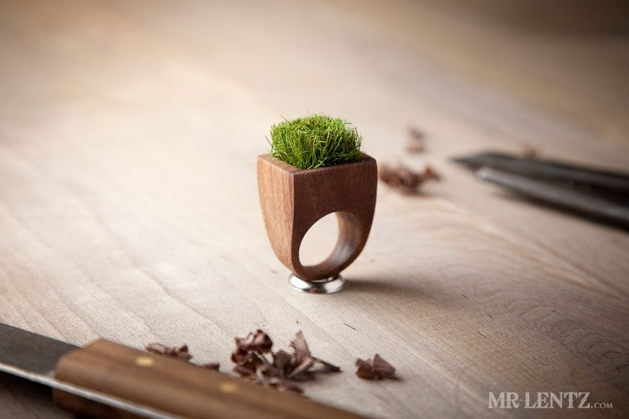 Unique Wooden Ring, Grass Wooden Planter Ring, Upcycled Jewelry 009 - MrLentz
