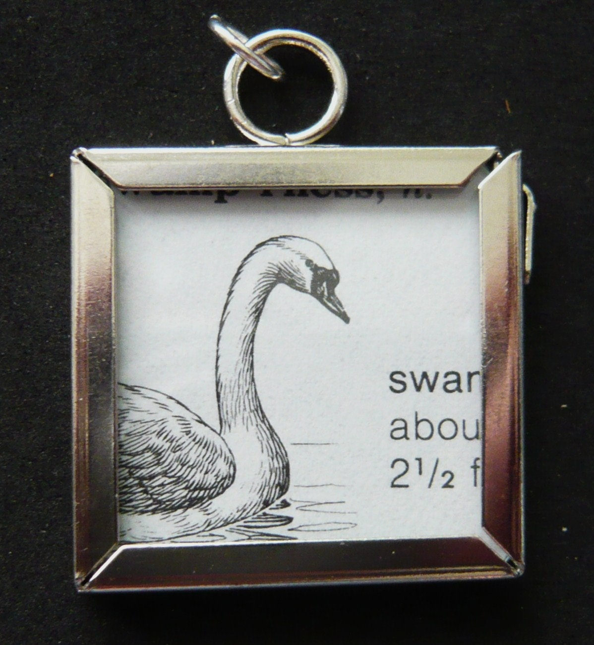 Swan Dictionary | RM.