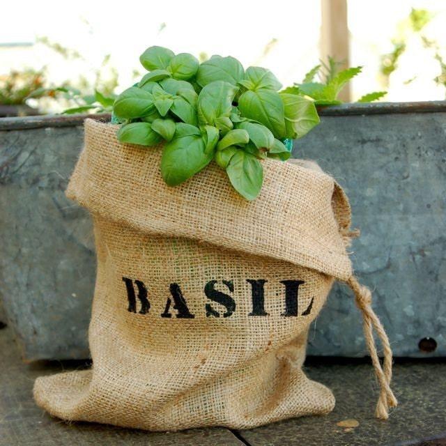 Мини Burlap мешок с базиликом