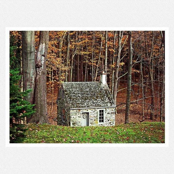 Autumn Decor Photography, woodlands, rustic, The Cabin, fine art photography print  8x10
