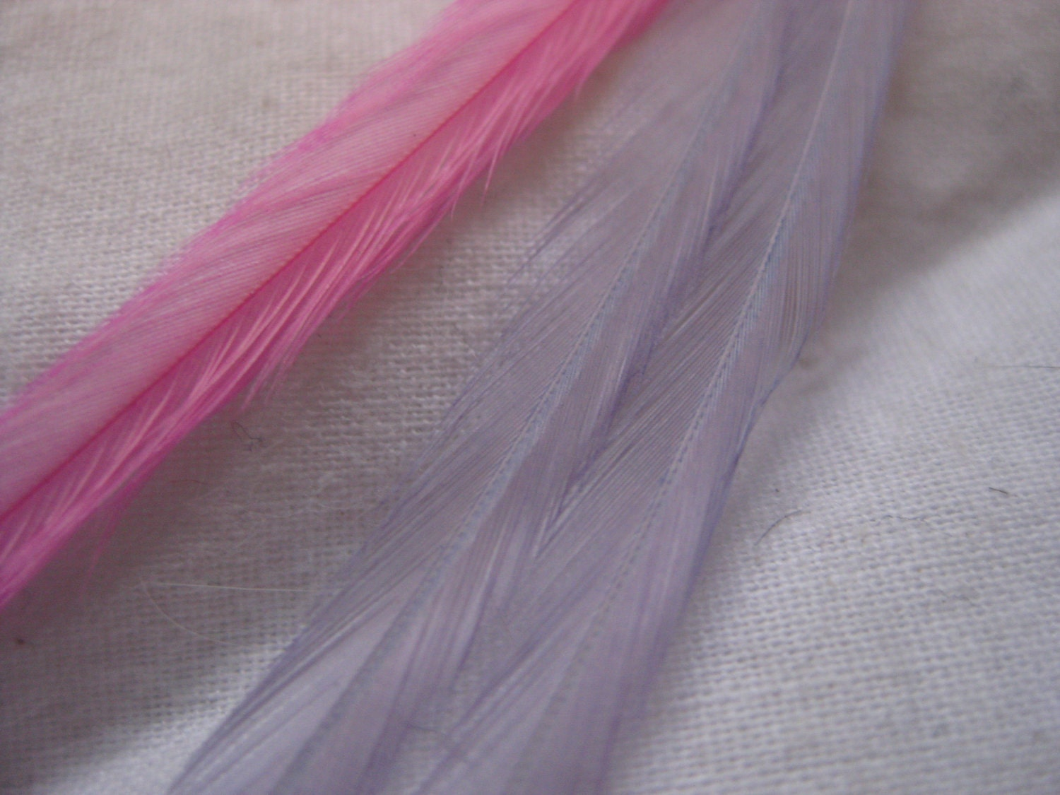 feather hair extensions san francisco. feather hair extensions san