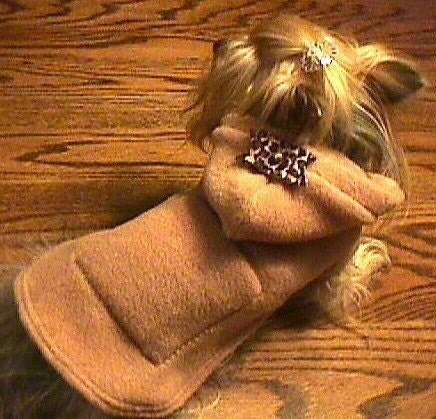 CAMEL HOODIE w/LEOPARD Bow, Pocket Dog Coat Jacket xxxs-xxs-xs-s-m