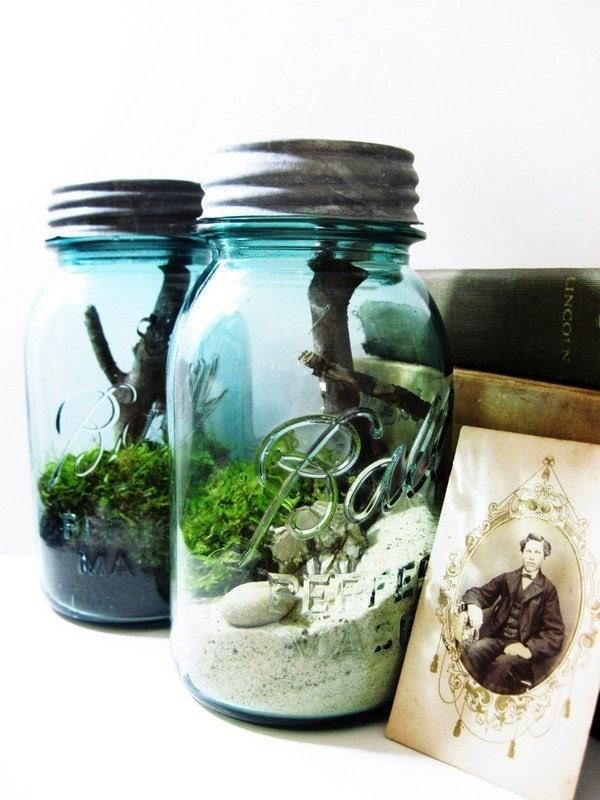 The Smell Of Rain - Vintage Ball Mason Jar Terrarium