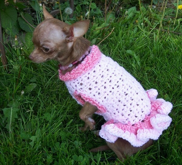 Free Crochet Pattern Chihuahua Sweater : FREE DOG SWEATER CROCHET PATTERNS - Crochet ? Learn How to ...