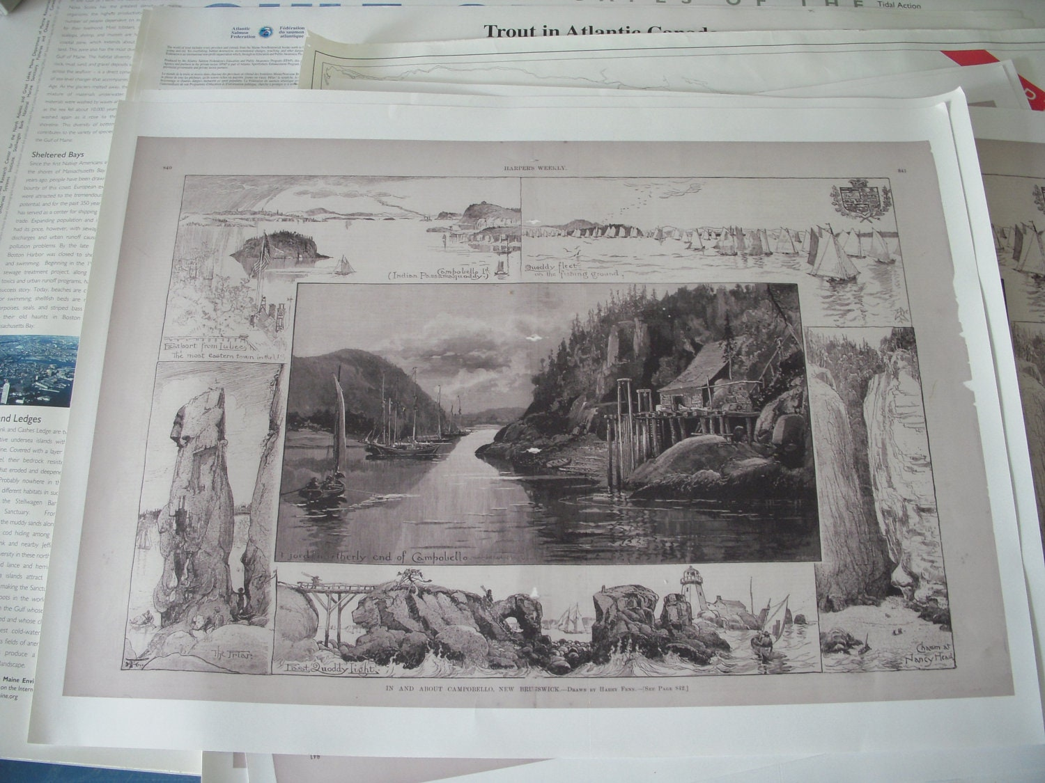 POSTER: Drawings of Campobello Island - Harper's Weekly late 1800s