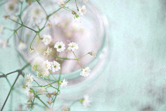 Mint In The Morning Signed Print, White Baby's Breath Photo, Mint Green Shabby Chic Decor, Color Fine Art Photography Wall Print - MySweetReveries