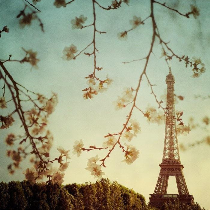 Le printemps - Fine art Paris photograph