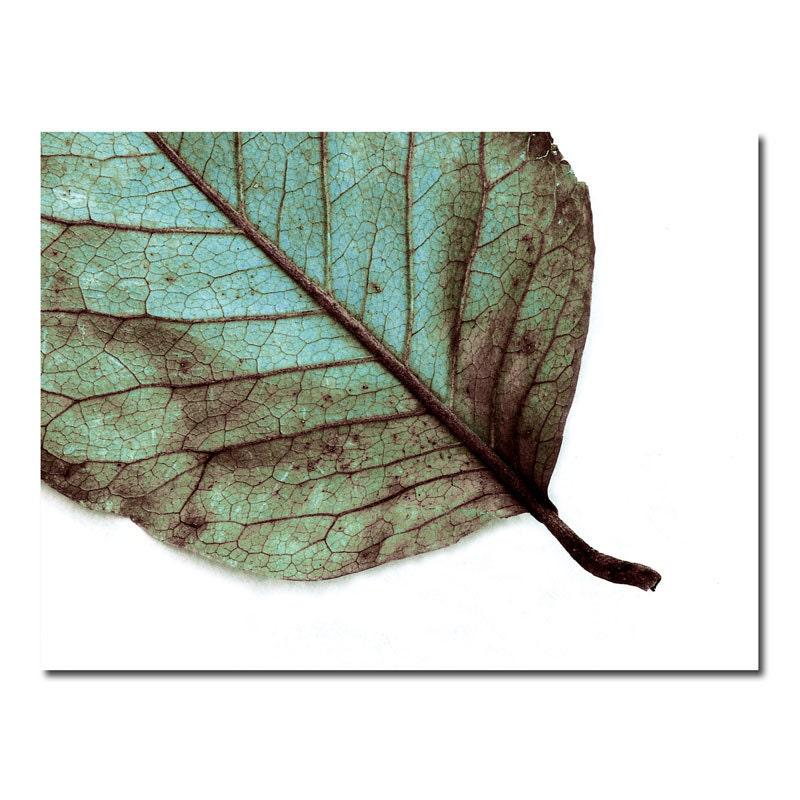 teal leaf woodland wall art rustic nature blue by galleryzooart. Black Bedroom Furniture Sets. Home Design Ideas