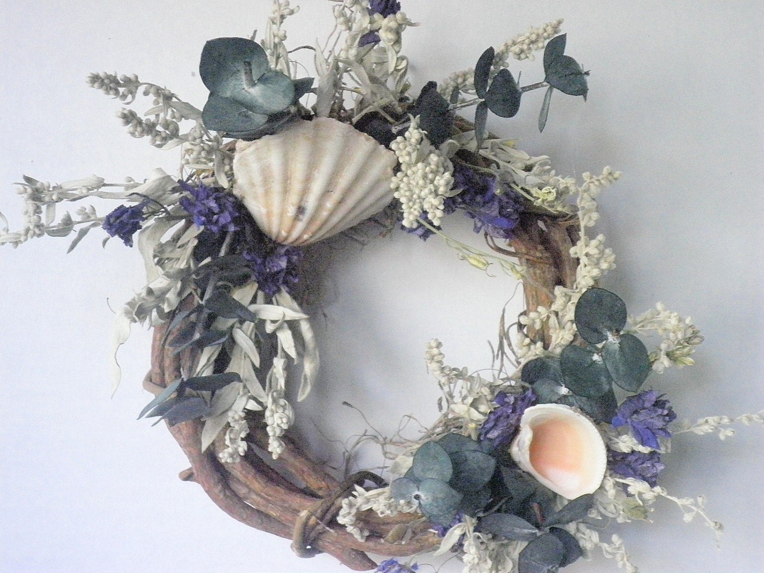Grapevine with Scallop Shell and Dried Flowers