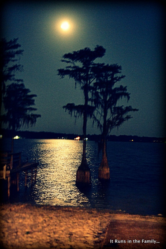 Moonlit Reflections 8x10 Photo Print - ItRunsInTheFamily