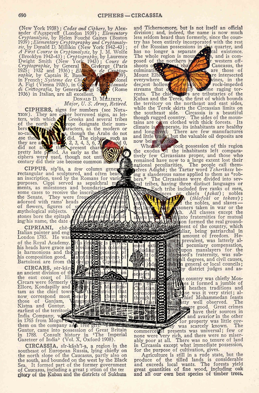 Butterfly collage Vintage Book Print Dictionary or Encyclopedia Page Print-Release the butterflies - Butterflies cage Print