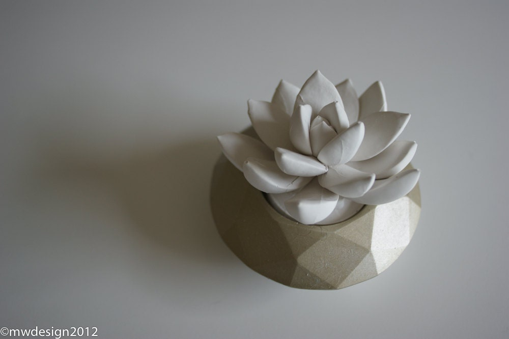 White Succulent Sculpture, Modern Champagne Faceted Geometric Container, Desktop, Tabletop Centerpiece