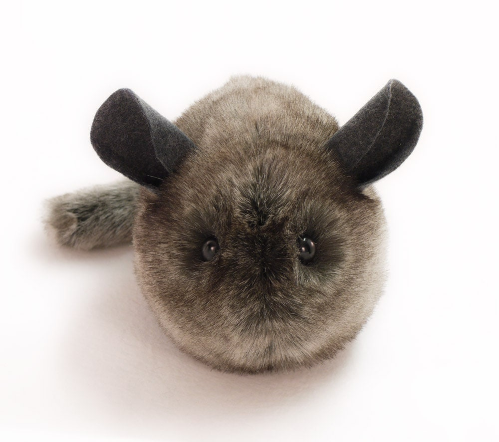 Chinchilla Stuffed Animal Lookup Beforebuying