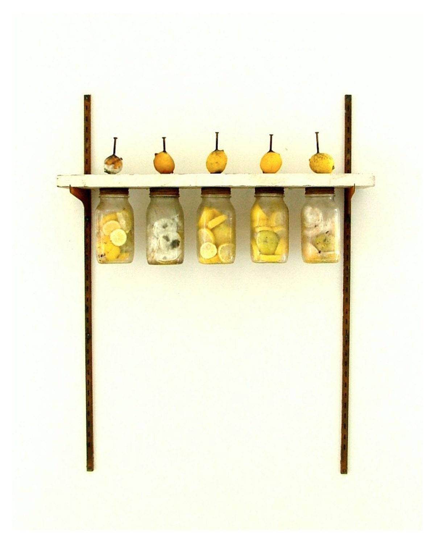 """8.5""""x11""""  Untitled (lemons) - KaraGunter"""