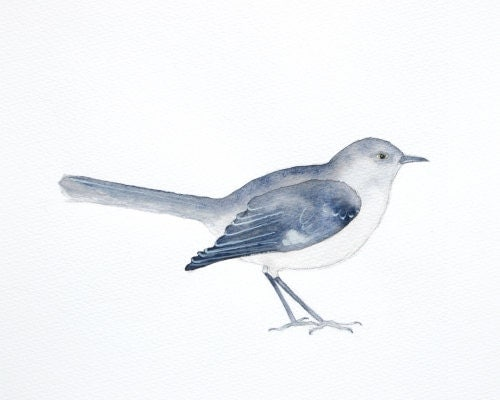 Mocking bird - watercolor - Fine art print of original watercolor painting - pale dusty blue bird - animal watercolor - gray bird wall art - moonflowermuse