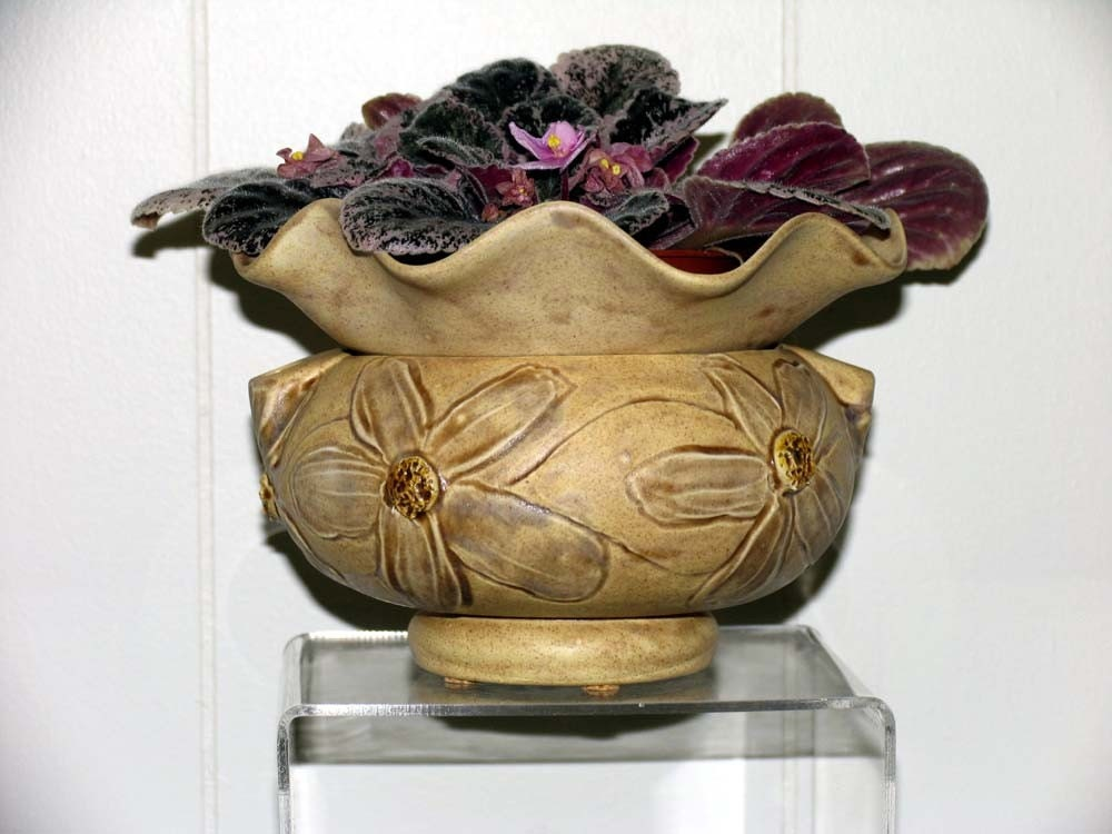 Rustic African Violet Ceramic By Artistsloftppaquin1 On Etsy