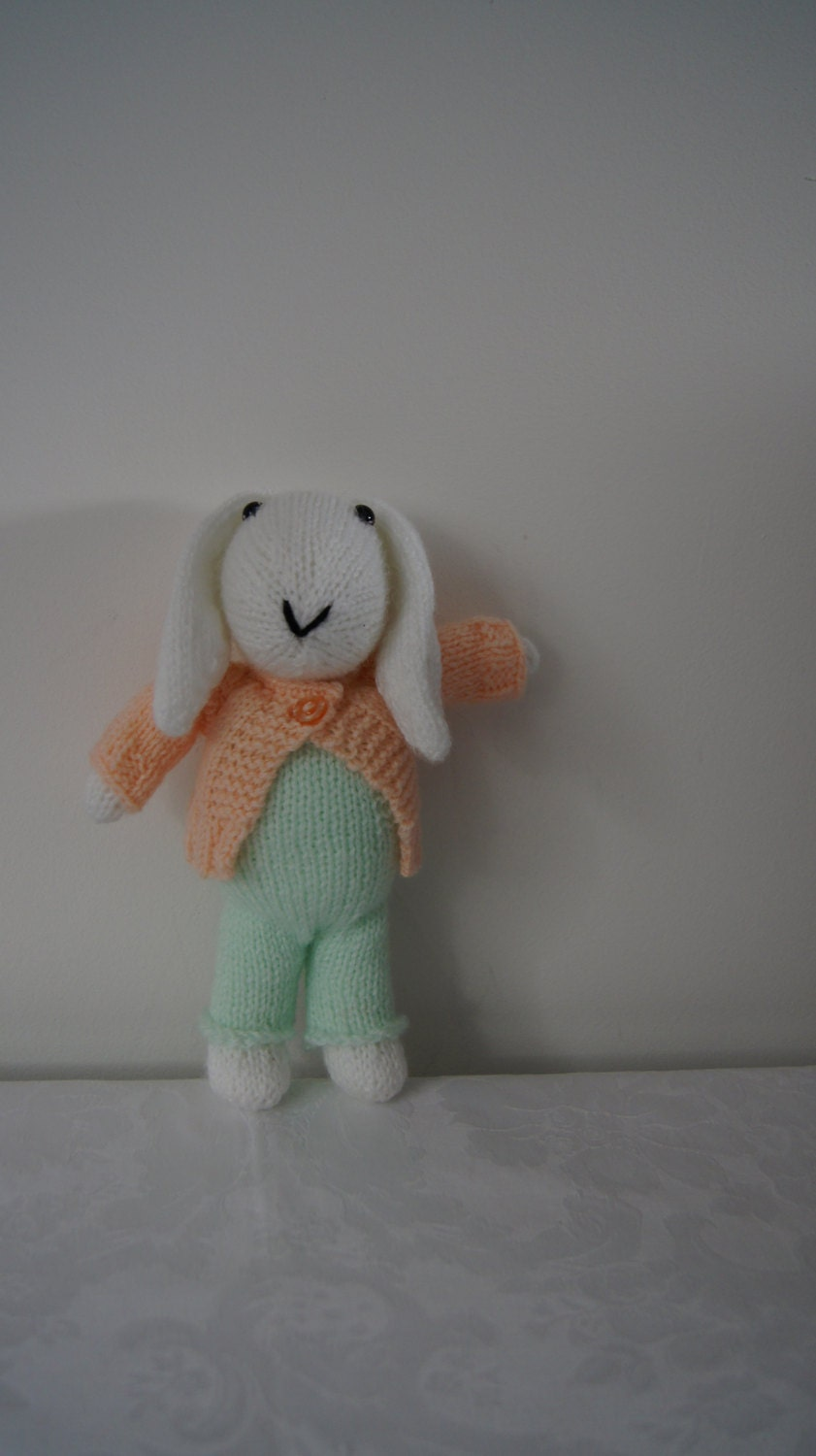 Hand knitted bunny rabbit with removable cardigan by Liz