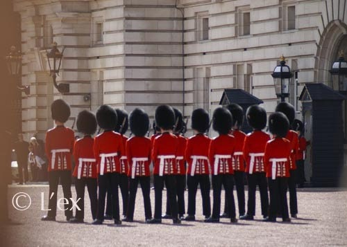 London Guards, Buckingham Palace 5x7 print