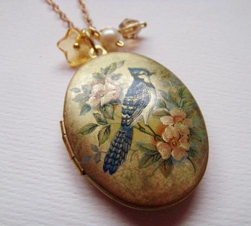 sepia locket . blue jay .