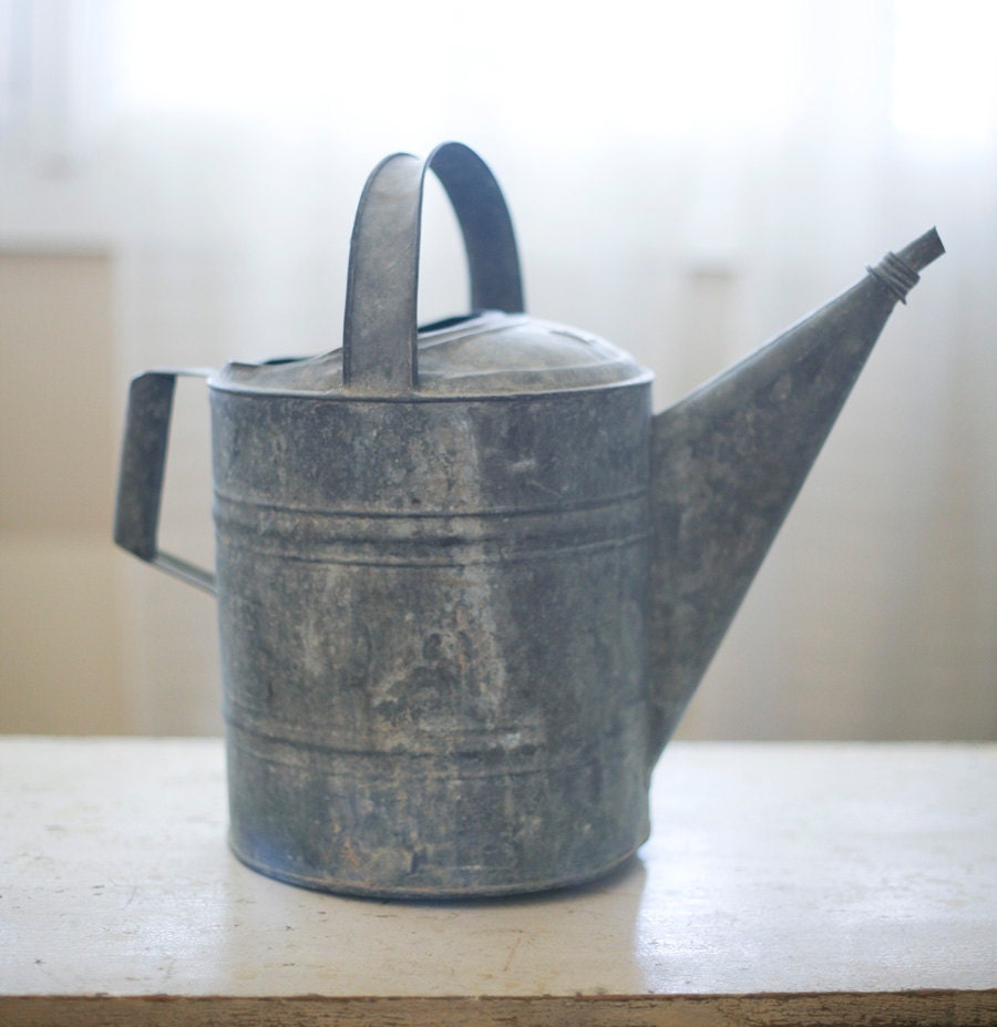 old zinc watering can - sadieolive
