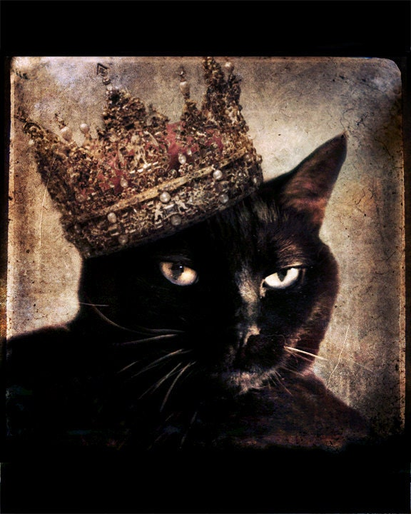Black Cat photo - Cat wearing a Crown - Animal photography - Animal ...
