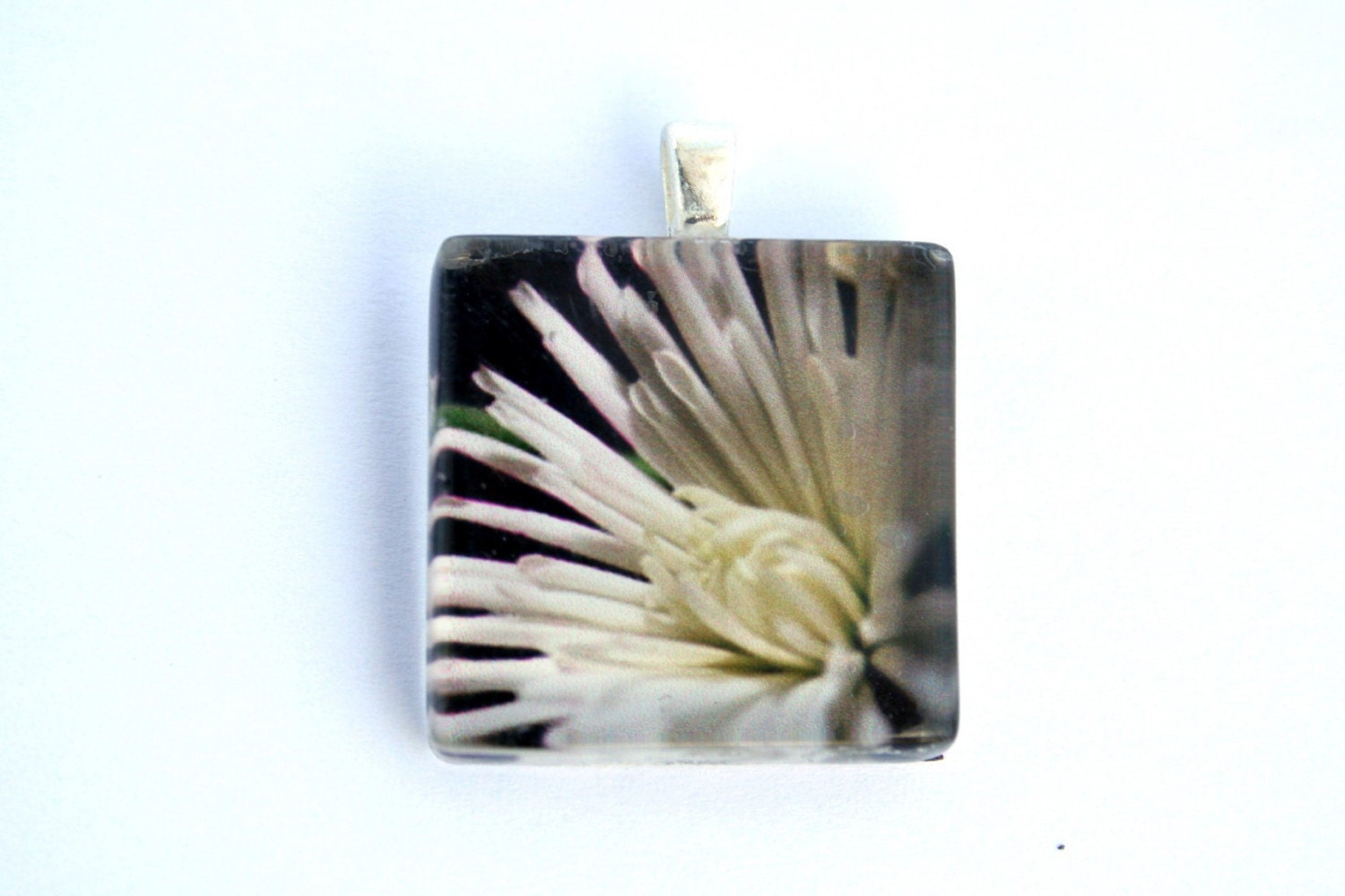 White Chrysanthemum Glass Tile Photo Pendant or Charm