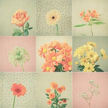 SALE Set of Nine 4x4 Prints - Pretty Petal