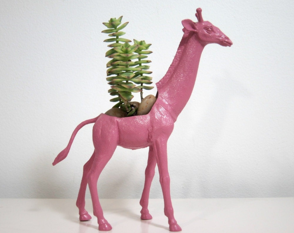 Sara the Giraffe Planter & Succulent
