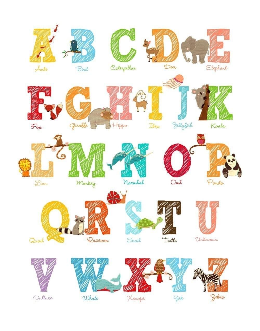 ABC Letter Print Large Size