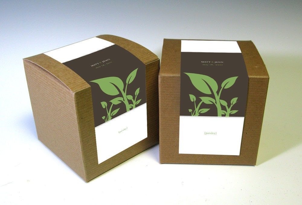 Eco-Friendly Herbs in a Box Wedding Favors