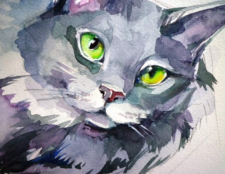 Custom ART work of YOUR cats, dogs and pets 9x11 inch waterolor Shipped via PRIORITY
