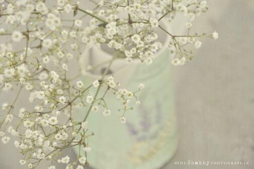 Summer Breeze - 7x5 - Fine Art Photography