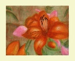 Cards - Buy 5 cards,   Select any images from my original paintings (sets of 1,  5, 10)