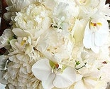 bridal flowers, bouquets etc.