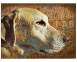 YELLOW LAB DOG Art Print OLD WORLD Boho Chic GOLDEN LABRADOR RETRIEVER POSTER