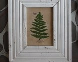 catherineotto Framed French Knot Fern Picture