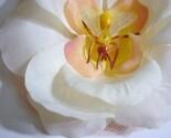 Wasps Nest Hair Flower