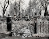Cemetery Gate Metallic Ice Winter