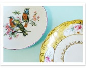 Lovely Vintage Plates - 5x7 photographic print