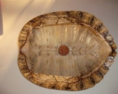 Turtle Shell Bowl