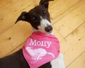 Custom pet name screenprinted cotton dog bandanna