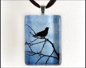 Night Bird - Glass Tile Photo Pendant - Original Photography