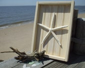White Finger Starfish Shadowbox