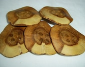 5 Handmade oak wood buttons, accessories