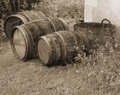 Wine Barrels and Bucket