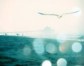25% off Sale - A New Day - Manhattan Beach - california hazy winter morning teal seagull photograph - 16x20 fine art print