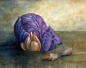 Cabbage and garlic watercolor